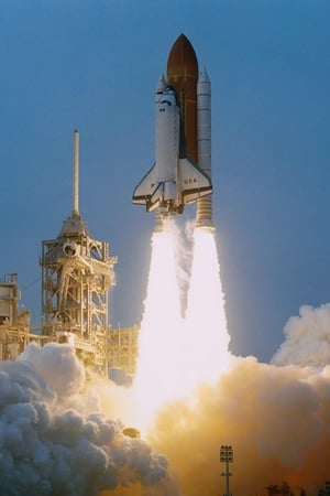 Image The Space Shuttle: Triumph & Tragedy