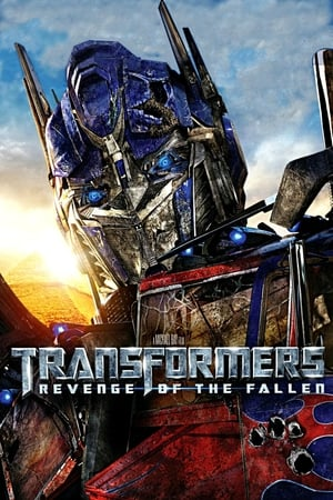 Image Transformers: Revenge of the Fallen