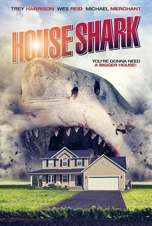 Image House Shark