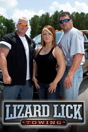 Image Lizard Lick Towing