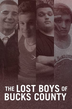 Image The Lost Boys of Bucks County