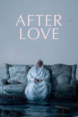Ver Online After Love