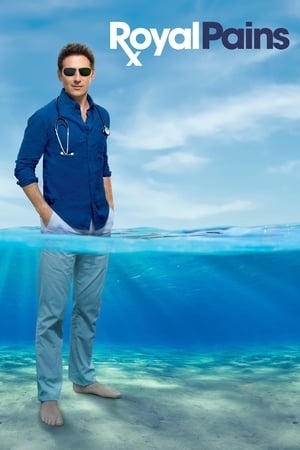Poster Royal Pains 2009