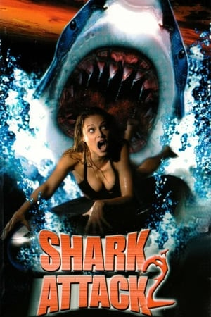 Image Shark Attack 2
