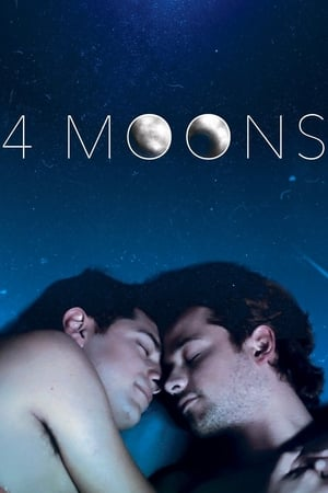 Image 4 Moons