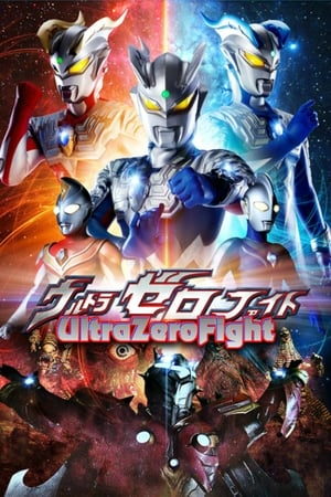 Image Ultra Zero Fight