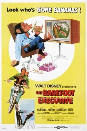 Image The Barefoot Executive