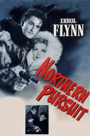 Image Northern Pursuit