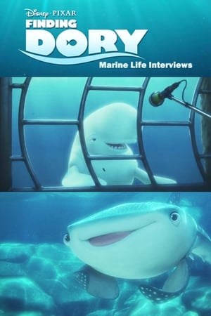 Image Finding Dory: Marine Life Interviews