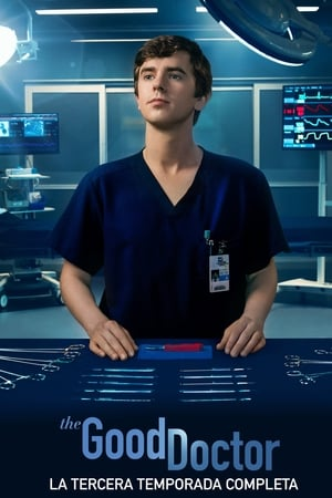 The Good Doctor 4x19 poster