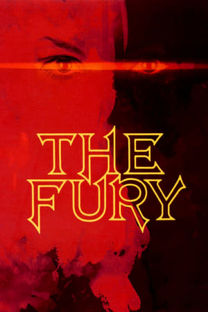Image The Fury