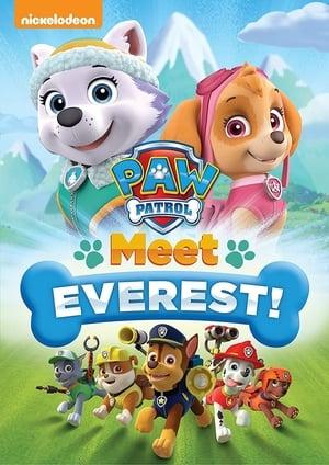 Paw Patrol: Meet Everest