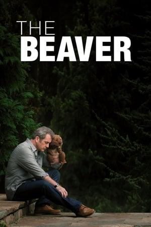 Image The Beaver