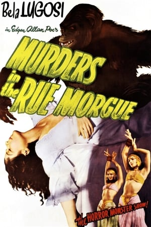 Image Murders in the Rue Morgue