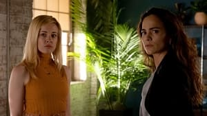 Ver Queen of the South 5x1 Online