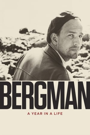 Image Bergman: A Year in a Life