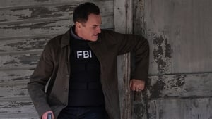 Ver FBI: Most Wanted 1x11 Online
