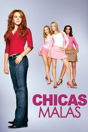 Poster Chicas malas 2004