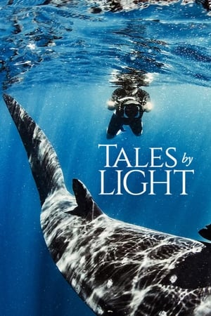 Image Tales by Light