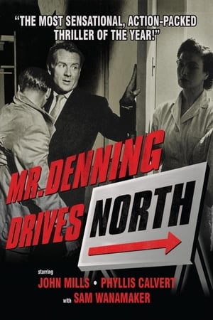 Image Mr. Denning Drives North