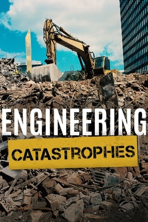 Image Engineering Catastrophes