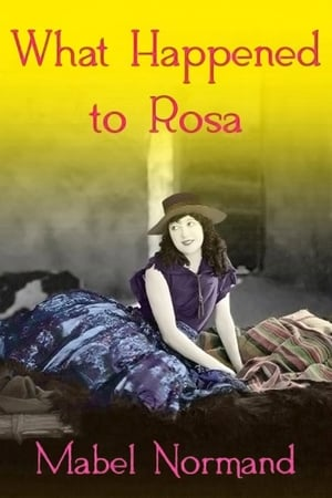 Poster What Happened To Rosa? 1920
