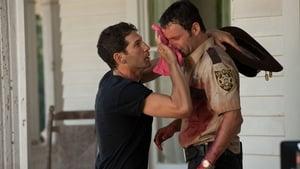 Watch The Walking Dead 2x2 Online