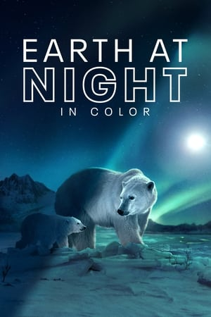 Image Earth at Night in Color