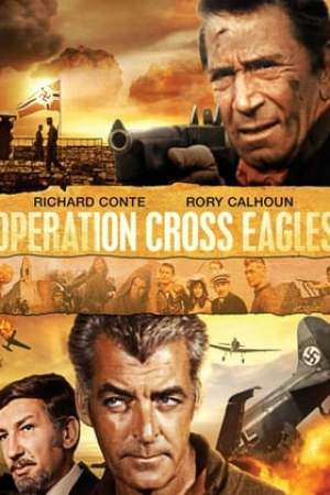 Image Operation Cross Eagles