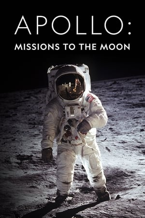 Image Apollo: Missions to the Moon