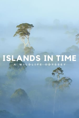 Image Islands in Time: A Wildlife Odyssey