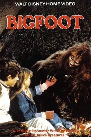 Image Bigfoot