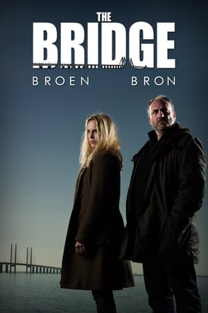 Poster The Bridge 2011