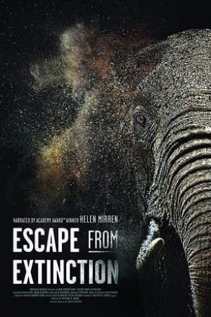 Image Escape from Extinction