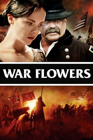Image War Flowers