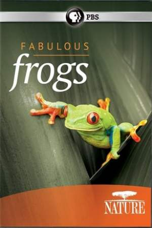 Image Fabulous Frogs
