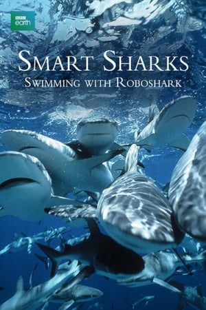 Image Smart Sharks: Swimming With Roboshark