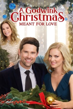 Poster A Godwink Christmas: Meant For Love 2019