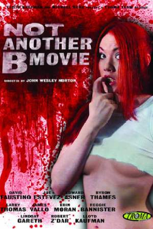 Image Not Another B Movie
