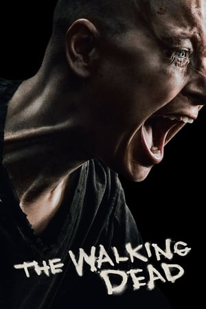 Poster The Walking Dead 2010