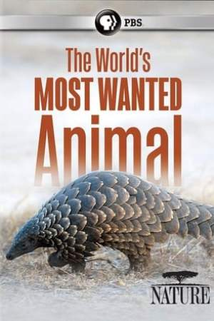 Image The World's Most Wanted Animal