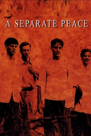 Image A Separate Peace