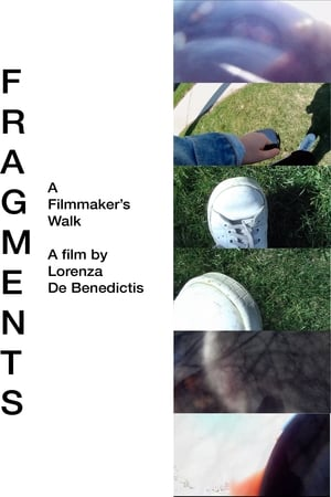 Image Fragments: A Filmmaker's Walk