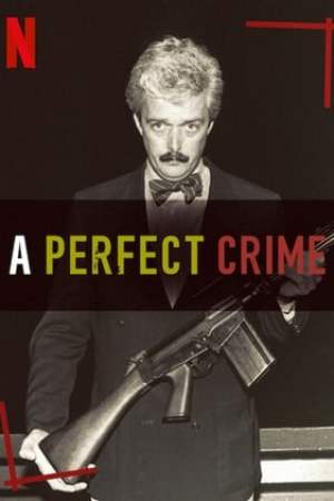 Image A Perfect Crime