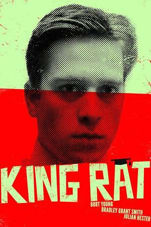 Image King Rat