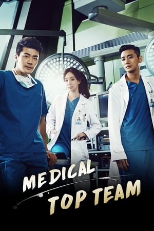 Poster Medical Top Team 2013