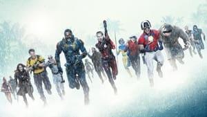 images The Suicide Squad