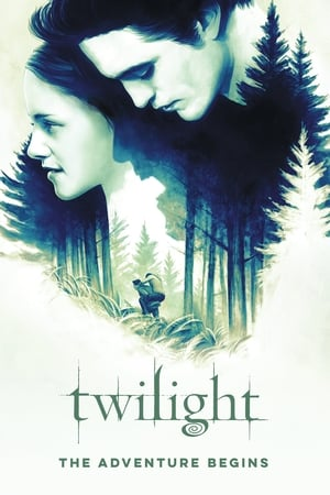 Image Twilight: The Adventure Begins