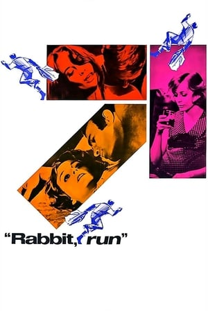 Image Rabbit, Run