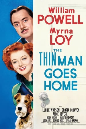 Image The Thin Man Goes Home